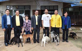 \'อธิบดีปศุสัตว์\'พบผู้ว่าฯเชียงใหม่ ถกติดตามสร้างสถานพักพิงสุนัขจรจัด